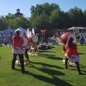 festival terre 2019 (2)